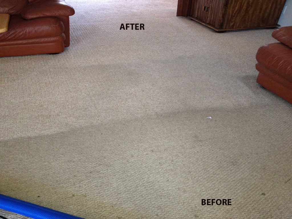 Carpet Cleaning All Green Carpet Cleaning